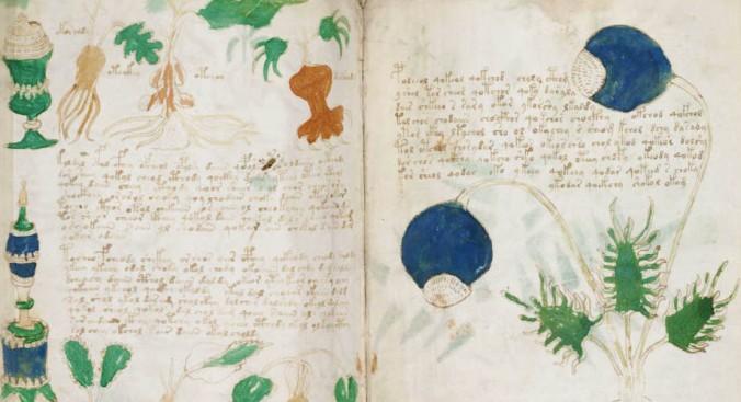 voynich-manuscript-main.jpg