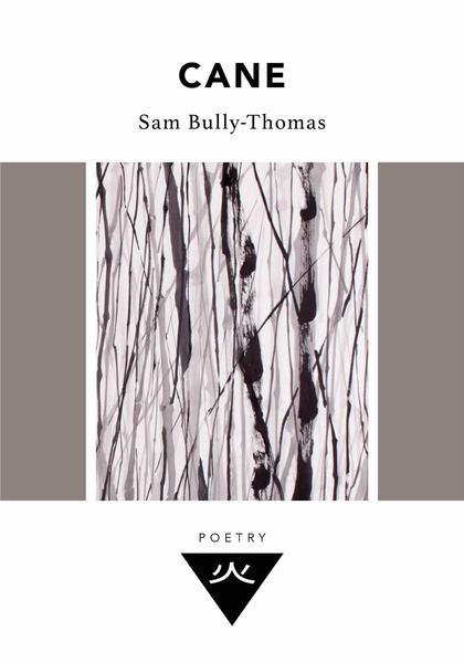 Wundor_Poetry_Paperback_Design_-_Cane_grande